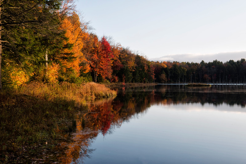 October 15 - Woodland Pond in the Charles E Baker State Forest