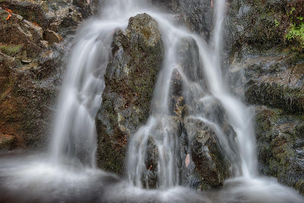 November 9 - Fitzgerald Falls