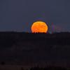 November 25 - Rising Full Moon