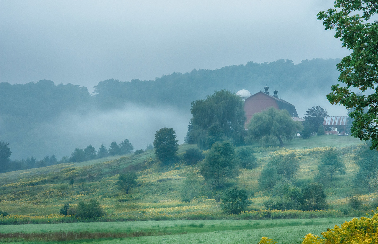 September 3 - Another Foggy Day