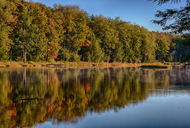 September 23 - Woodland Pond in the Brookfield Horse Trails