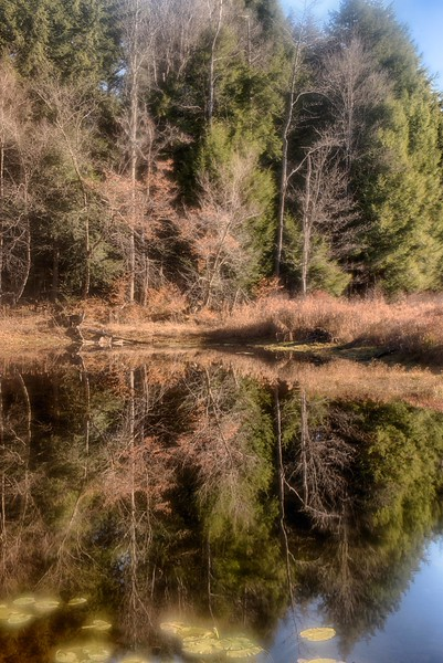 November 3 - Lost Pond in the Brookfield Horse Trail System