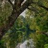 September 1 - Chenango River
