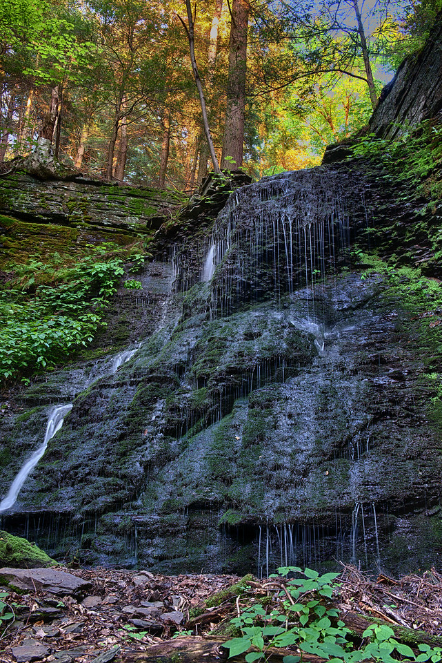 June 6 - Outlet to Lost Pond Falls