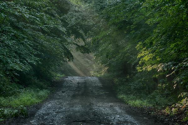 August 13 - Furman Mills Road