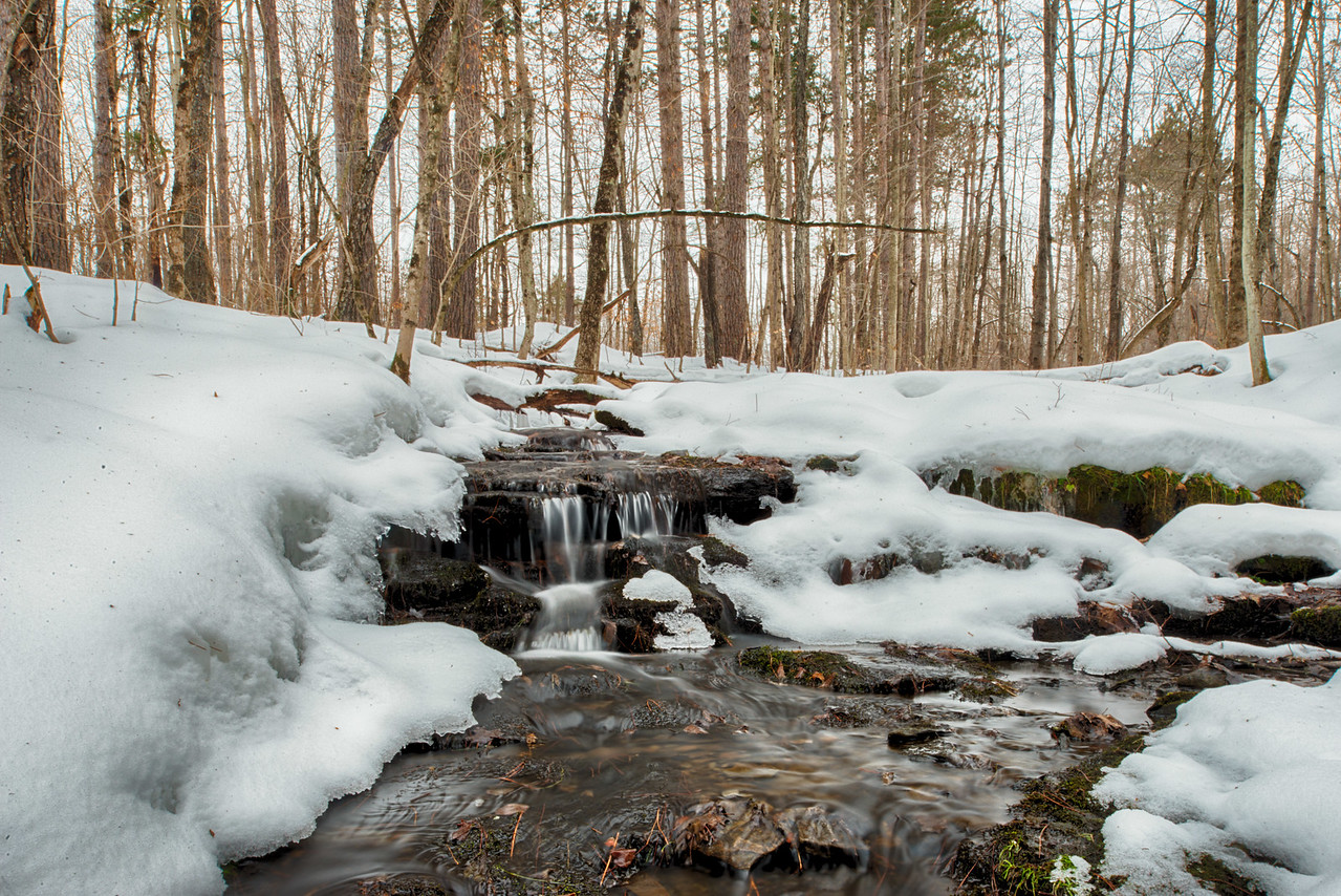 December 24 - Small brook in the state lands near here