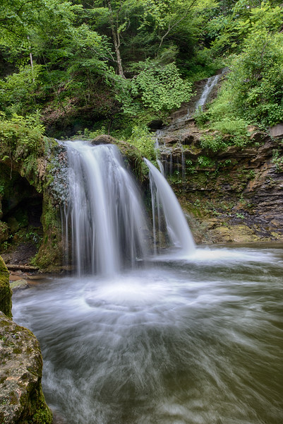 July 10 - Woodruff Nature Area in Vanhornsville