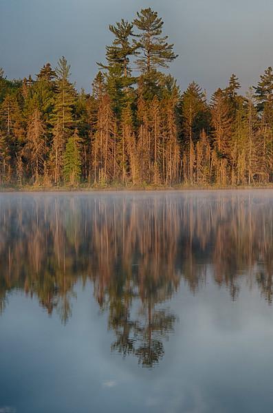June 20 - Helldiver Pond
