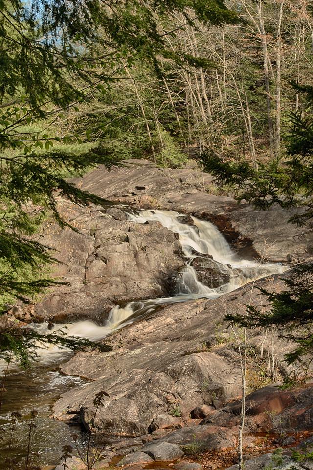 May 16 - Beaver River in the Adirondacks