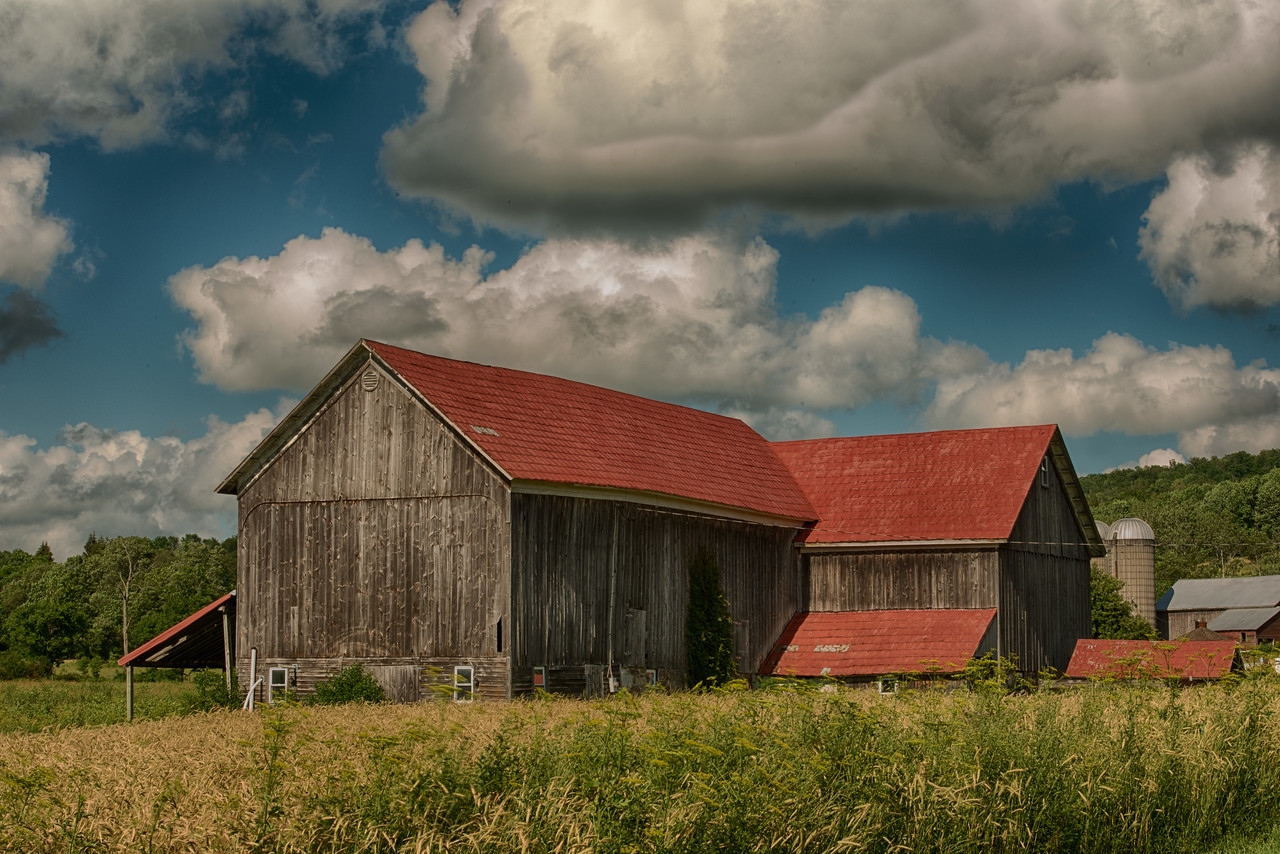 July 8 - Otsego County Barn