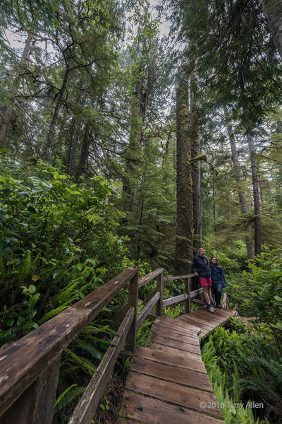Hiking through the rain forest