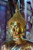 Gleaming Buddha