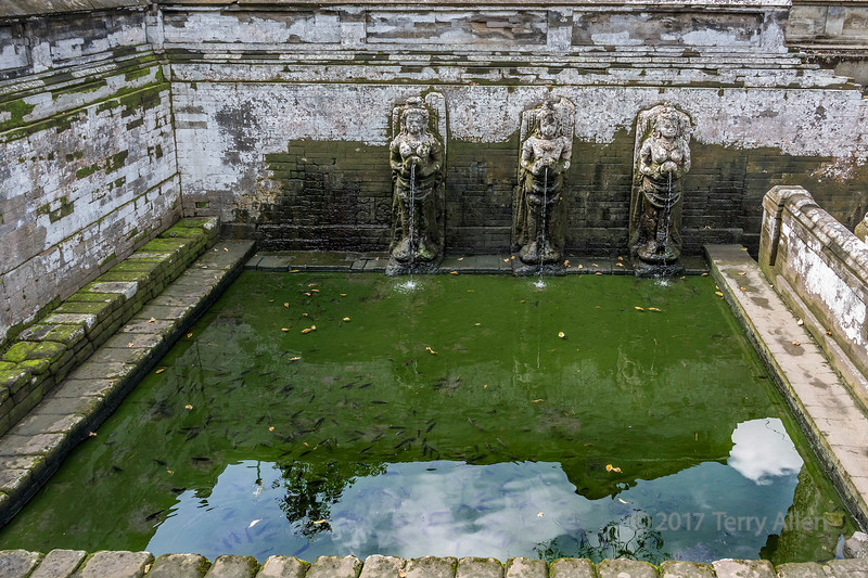 Bathing temple with fish and reflections