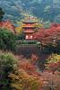 Taisan-ji pagoda with fall colours