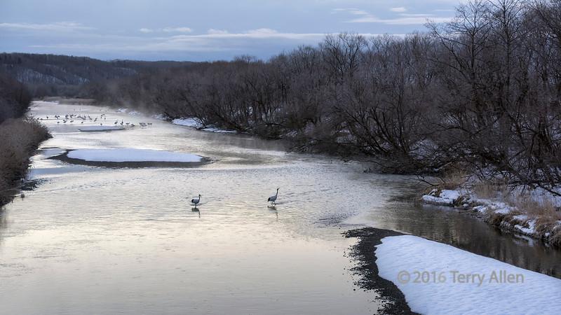 Early morning on the Setsuri River