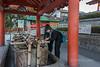 Shinto ritual purification