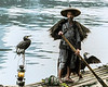 Fisherman with his birds