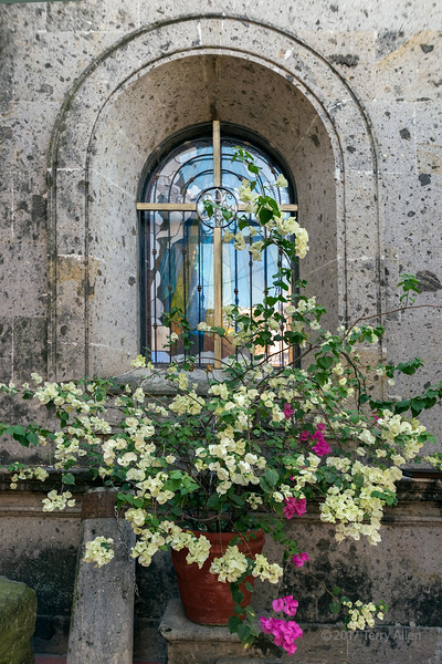 Stained glass and bougainvilleas