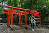 """The girl with the red umbrella<br /> <br /> Today it rained and it was not possible to see Mount Fuji so we went to Kunozan Toshogu Shrine.  Some powerful clans in Japanese history established and dedicated shrines to the their clans' founders. One famous example is the Toshogu Shrine dedicated to Tokugawa Ieyasu in Shizuoka, Japan.  This photo shows some red torii gates at the shrine. A torii is a traditional Japanese gate commonly found at Shinto shrines, where it is a symbol of the transition from secular to sacred grounds. <br /> <br /> As I was photographing these bright torii gates in the rain, I glanced back at the path and noticed this young woman walking up the path with a red umbrella.  I politely asked if she would pose for me beside the torii gates and she graciously agreed.<br /> <br /> I'm sitting here in the lounge in Tokyo waiting for my flight back to Vancouver and noticed fotoeffects comment and question about what i was talking about.  Some of my lectures were about the importance to their career of learning English for Japanese graduate students and junior professors. The rest of the talks were of a medical nature<br /> <br /> 02/11/14  <a href=""""http://www.allenfotowild.com"""">http://www.allenfotowild.com</a>"""