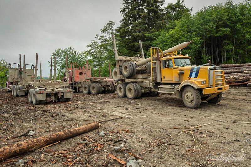 Multi-axle logging trucks