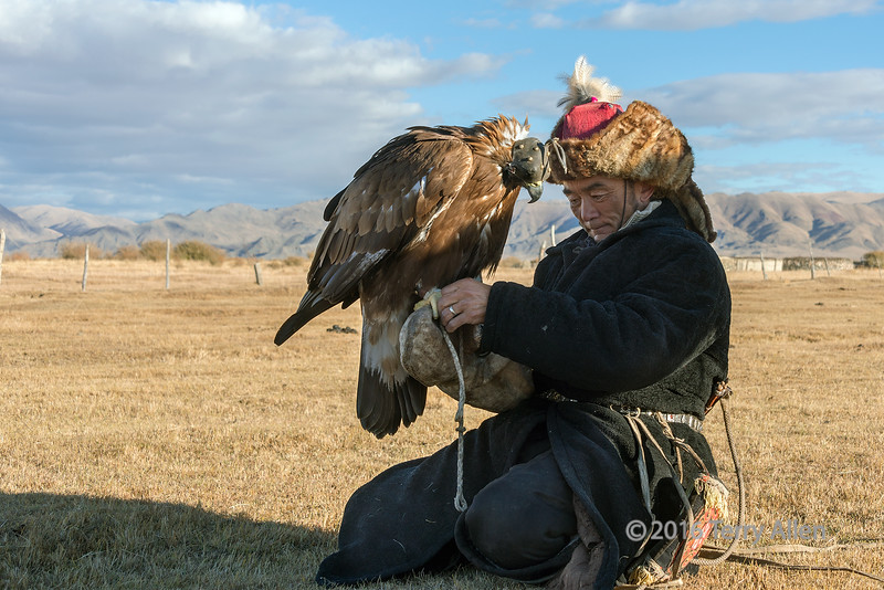 """A tender moment<br /> <br /> I was in Western Mongolia in the fall to attend the famous eagle festival in Olgii where Kazakh eagle trainers come from far and wide to compete with their birds. I was very anxious to see my first tribesman with his golden eagle!  <br /> <br /> Then I spotted this eagle trainer with his bird riding across the steppes from a long distance away and watched, with growing excitement, as he approached us.  When he reached us, he descended from his horse to rest himself, his horse, and his eagle. He said he was heading to the festival to compete with his bird.  After accepting a drink from us, he was adjusting the jesses (leg straps) on his bird and getting ready to get back on his horse and ride off when I caught this moment.  <br /> <br /> I will explain more about the relationship between the eagle and the trainer in another post.<br /> <br /> A few other shots of this exciting encounter can be seen here: <a href=""""http://goo.gl/kUvSPw"""">http://goo.gl/kUvSPw</a><br /> <br /> 15/03/15  <a href=""""http://www.allenfotowild.com"""">http://www.allenfotowild.com</a>"""