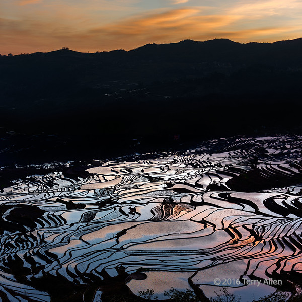 """Sunrise over the rice terraces (best larger)<br /> <br /> Panoramic view of some of the 1300 year old flooded rice terraces in Yuanyang County, China.  The best time of year to photograph them and get the sunrise or sunset reflected in the water is the winter (although it meant living and sleeping in my outdoor clothes since the temperature indoors was the same as outdoors)<br /> <br /> Other photos from the area can be seen here: <a href=""""http://goo.gl/dfjnzG"""">http://goo.gl/dfjnzG</a><br /> <br /> 30/01/15  <a href=""""http://www.allenfotowild.com"""">http://www.allenfotowild.com</a>"""