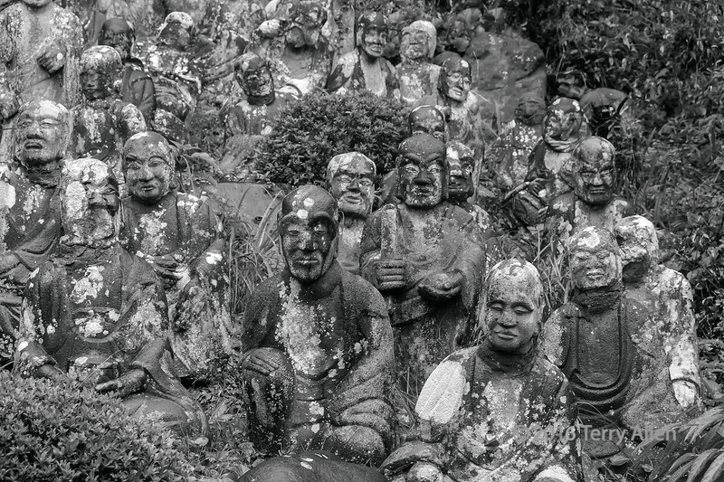 """500 disciples of Buddha #3 (Gohyakku Rakkan)<br /> <br /> Many temple in Japan have gardens containing many Rakkan statues.  These are disciples of Buddha, and in the Seikenji Temple there are 500 (gohyakku) of these, and it is said that no two faces are alike.<br /> <br /> A few other shots of the Gohyakku Rakkan, and the temple can be seen here: <a href=""""http://goo.gl/sazFlF"""">http://goo.gl/sazFlF</a><br /> <br /> Thank you to everyone who voted for my photo in the National Geographic Daily Dozen.  You guys are great! I think it finished with the most votes of the 12 photos, so now I'll have to wait and see what happens next (if anything)<br /> <br /> 09/01/14  <a href=""""http://www.allenfotowild.com"""">http://www.allenfotowild.com</a>"""