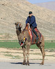 There's a first time for everything<br /> <br /> Intrepid traveller experiencing his first time on a camel, Nasqh-e Rostam, Marvdasht, Iran