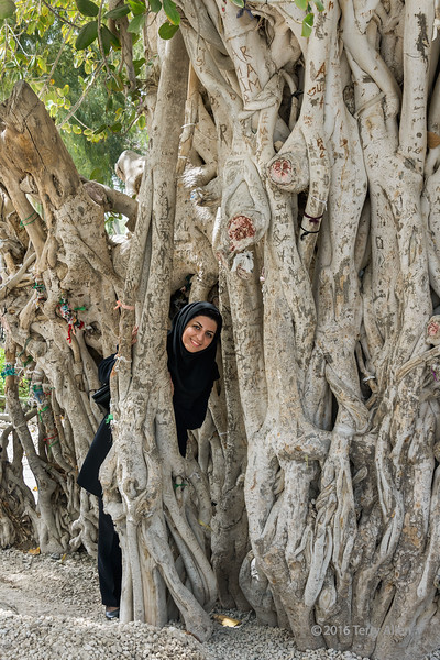 """Revered ancient tree (best larger)<br /> <br /> I posed this woman among the roots of a famous ancient lur tree to add a sense of scale to the tree.<br /> <br />  'Green Tree', at around 600 years old, is the oldest Lur tree on Kish Island, Lur is a rare species belonging to the fig genus, with large oval leaves. In Iran it is only native to Kish Island. People believe that the tree can bring good luck and tie lengths of yarn or fabrics to the roots to wish for long life and fulfillment of their needs and dreams, and they also carve wishes into it.<br /> <br /> Response to comment about cropping:  This image is actually about the tree, with no intention of being a portrait, so in this instance the woman is the prop for adding scale and interest to the tree, and not vice versa as I was hoping my caption, featuring the tree, would have demonstrated.  Had my intention been to do a portrait of the woman, I would have zoomed in.  In this instance I wanted to show the interesting carvings on the tree, the pieces of yarn, and the size of this magnificent old tree.<br /> <br /> Other photos from around Iran can be seen here: <a href=""""http://goo.gl/AUs8dE"""">http://goo.gl/AUs8dE</a><br /> <br /> 02/05/15  <a href=""""http://www.allenfotowild.com"""">http://www.allenfotowild.com</a>"""