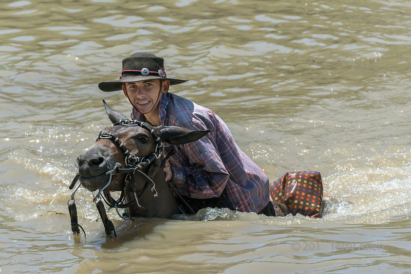 """Whoops, deep water!<br /> <br /> Boy on a mule crossing the Pixaim River, Pantanal Brazil<br /> <br /> Other pictures from the river can be seen here: <a href=""""http://goo.gl/ixfAYo"""">http://goo.gl/ixfAYo</a><br /> <br /> 03/04/15  <a href=""""http://www.allenfotowild.com"""">http://www.allenfotowild.com</a>"""