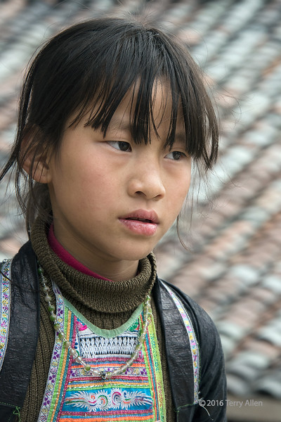 """Pulchritudinous Basha Miao girl<br /> <br /> Girl in ethnic attire, with a tiled roof in the background, Basha Gun Village, Guizhou Province, China. (pulchritudinous = comely, beautiful)<br /> <br /> The garments of Miao residents of Basha are made from an indigo-dyed hand-woven cotton, dyed with Quindai (made from the juice of Baphicacanthus cusia leaves). Eggwhite is added to make it rain-proof, giving it a shiny  look. The men's outfits are plain indigo jackets and trousers (following pics) and the women wear indigo jackets and embroidered short pleated skirts embellished with colorful batiks (following pic).<br /> <br /> Other photos of the Basha Miao people, and the story of their distinctive hair style can be seen here: <a href=""""http://goo.gl/tLFKVp"""">http://goo.gl/tLFKVp</a><br /> <br /> 15/05/15  <a href=""""http://www.allenfotowild.com"""">http://www.allenfotowild.com</a>"""