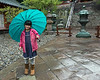 "Girl with a blue umbrella<br /> <br /> It was pouring rain at the Toshogu Shrine, a shrine dedicated to Tokugawa Ieyasu (1543-1616), who brought a long period of civil wars to an end and united all of Japan. The shrine, founded in 1617, is on Mount Kuno (Kunosan) and his tomb is at the top of the mountain.  <br /> <br /> Everyone had umbrellas and I starting noticing that they lent a spot of colour to an otherwise drab day.  I saw this little girl with her bright blue umbrella and pink jacket and asked her to pose for me and she obliged me with a sweet smile.<br /> <br /> Other photos of this beautiful shrine can be seen here: <a href=""http://goo.gl/7H2QGB"">http://goo.gl/7H2QGB</a><br /> <br /> 10/01/14  <a href=""http://www.allenfotowild.com"">http://www.allenfotowild.com</a>"