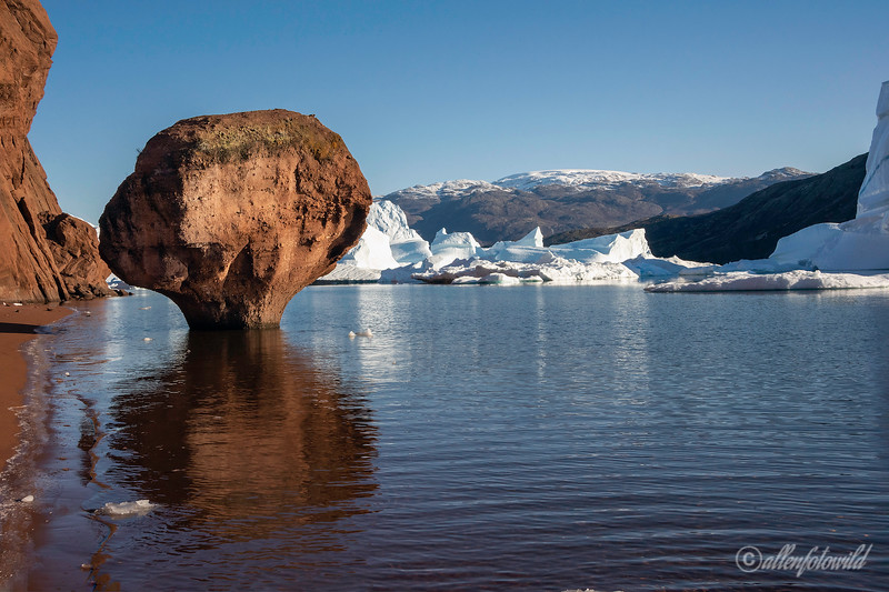 Toadstool and icebergs