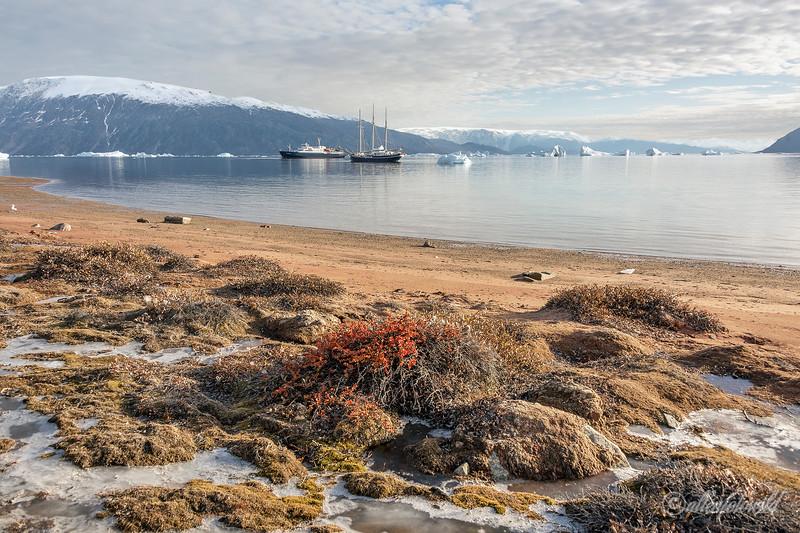 Inner fjords