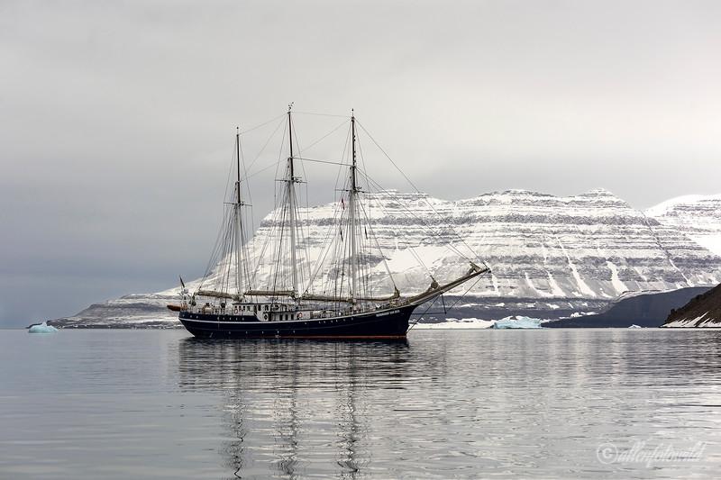 Classic arctic scene