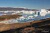 Icebergs galore