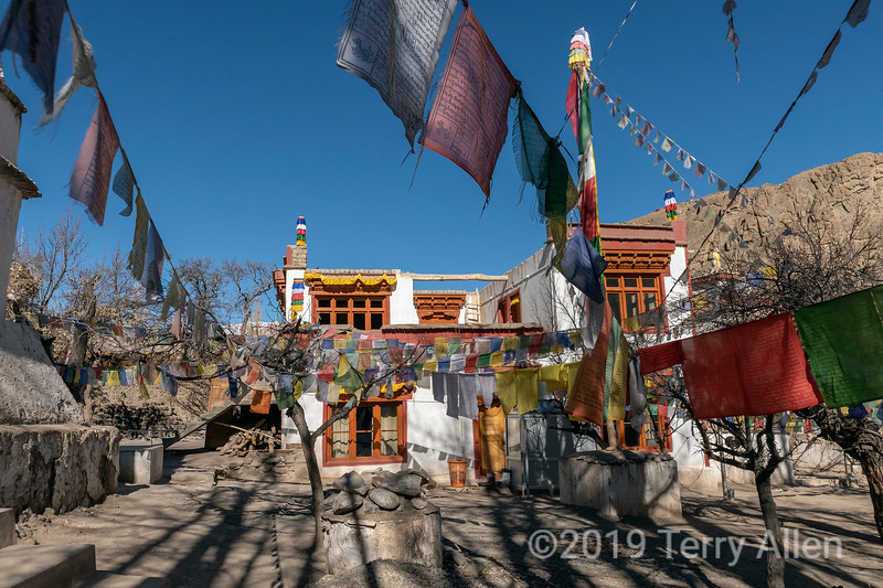 Prayer flags and tree shadows