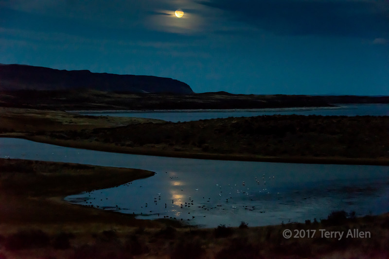 Moonrise with water birds