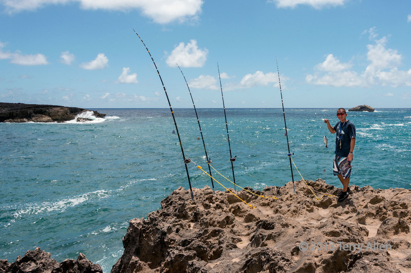 """Big rods, small fish  8/13/13<br /> <br /> These are some seriously big fishing rods, set up to catch large fish at La'ie Point, Oahu. They are even equipped with bells (see larger sizes) to warn the fisherman when the hook is taken.  The small fish is actually a bait fish.<br /> <br /> For another shot of the fisherman tending his lines and other cool photos from the area see here: <a href=""""http://goo.gl/3LBI40"""">http://goo.gl/3LBI40</a><br /> <br /> The SM site continues to malfunction and although SM staff is aware of the malfunction, and say they are trying to fixit, it would appear that they are not making a lot of progress.  The problem is affecting everyone's stats since the photos are mostly hidden and can't be seen without hunting them down.  Finger's crossed that they will find a solution soon."""
