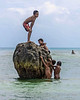 "King of the castle (best seen at larger sizes).<br /> <br /> Boys climbing on a piece of dead coral at low tide, Kitava Island, Trobriand Islands, PNG<br /> <br /> As a follow up to a previous post ( <a href=""http://goo.gl/zGy7L"">http://goo.gl/zGy7L</a> ), there is an interesting explanation of how the young girls can be sexually active, but have very low pregnancy rates.  It all has to do with yams.   It is almost impossible to overestimate the importance of yams to the Trobriand culture, and the production of yams is a focus of daily life.  A lot of time and energy is spent growing yams, celebrating the harvest, and storing yams.  Yams are a source of both food and wealth, and yams are a medium of exchange.  Yams are grown by men who spend tremendous effort on growing their yam gardens, not for themselves, but to give to women (recall that this is a matrilineal society).  Once the yams are harvested they are displayed for all to see before they are turned over to the woman they have been grown for. <br /> <br /> Yams and marriage are significantly linked, and it is only after a man and woman have eaten yams together that they are considered to be married.  There are complicated relationships between families centered around the growing and acquisition of yams (too complicated to describe here), and after harvest there are yam festivals and yam competitions, accompanied by much sexuality.<br /> <br /> So what does this have to do with pregnancy?  It turns out that yams contain phytoestrogens and plant sterols whose effects are contraceptive.  The chemist Carl Djerassi synthesized a key ingredient for oral contraceptives (the long-acting progesterone compound norethindrone) from chemicals he extracted from yams in the 1950s, and this research led to the development of birth control pills. So societies that have high yam consumption (including parts of Mexico) experience reduced conception as a side effect. The autobiography that Dr. Djerassi wrote,  ""The Pill, Pygmy Chimps and Degas' Horse"", describes the discovery of the birth control pill, and it makes fascinating reading.  <br /> <br /> More new photos can be seen here: <a href=""http://goo.gl/47FLK"">http://goo.gl/47FLK</a><br /> <br /> In answer to comments: yams (Dioscoreaceae, yellow/white colour) and sweet potatoes(Convolvuaceae, orange colour) are often confused in grocery stores, but belong to completely different families of plants. <br /> This large rock is probably a piece of coral rubble that was thrown up into shallow water by a huge storm."
