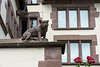 """Bulldog with a frog and two roses<br /> <br /> This beautiful bulldog sits on top of a wall outside the Basel State Archives in Old Basel, Switzerland.  The frog is on the wall above and behind him.<br /> <br /> For more photos of Old Basel, see here: <a href=""""http://goo.gl/54IYJn"""">http://goo.gl/54IYJn</a><br /> <br /> 26/09/13  <a href=""""http://www.allenfotowild.com"""">http://www.allenfotowild.com</a>"""