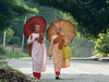 """Two nuns with parasols walking down the road near Dha Kya Di Tar nunnery, Sagaing, Mandalay, Myanmar'<br /> <br /> Other interesting photos of a trio of laughing nuns, red-robed monk with a giant Buddha, and rows of porcelain Buddhas can be seen here: <a href=""""http://goo.gl/gU1tg3"""">http://goo.gl/gU1tg3</a><br /> <br /> 19/12/13  <a href=""""http://www.allenfotowild.com"""">http://www.allenfotowild.com</a>"""