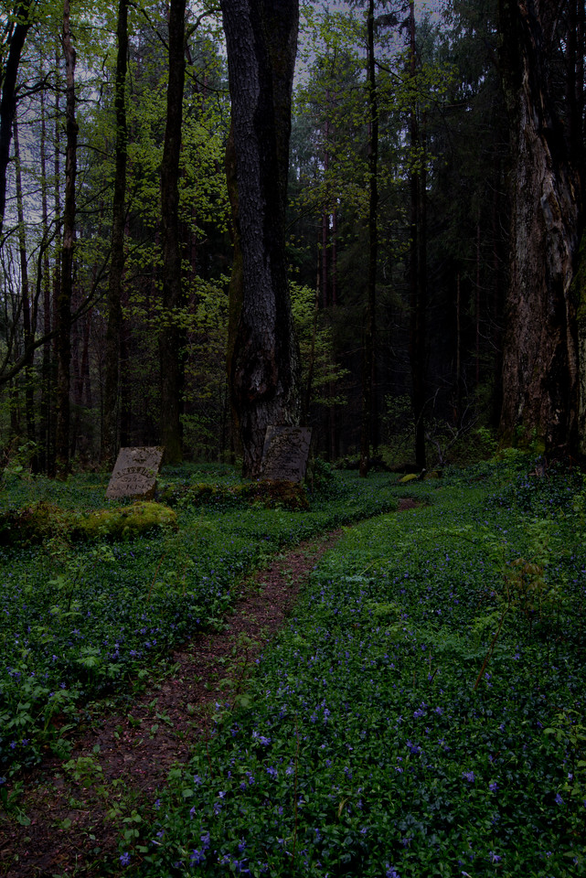 May 8 - Cemetery in the deep woods.  1820s to the 1860s