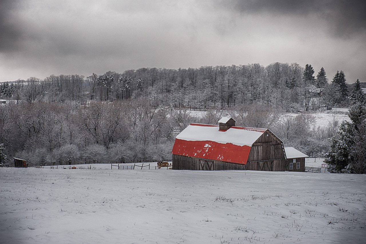 December 21 - Last night it rained over an inch and today it turned to snow.  Andrews Road, Sherburne, NY