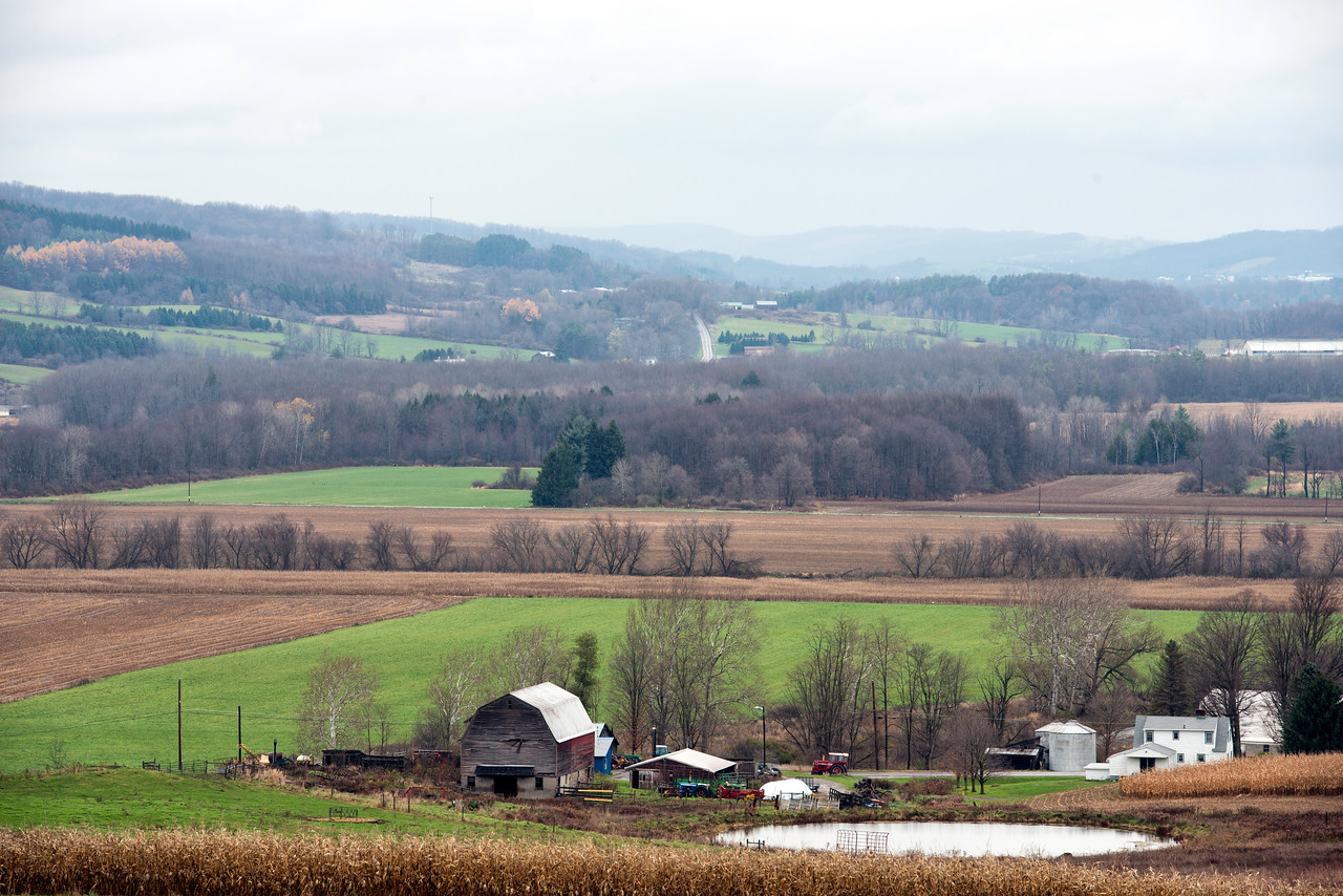 October 31 - The rolling hills of Chenango County.  Between Sherburne and Smyrna.