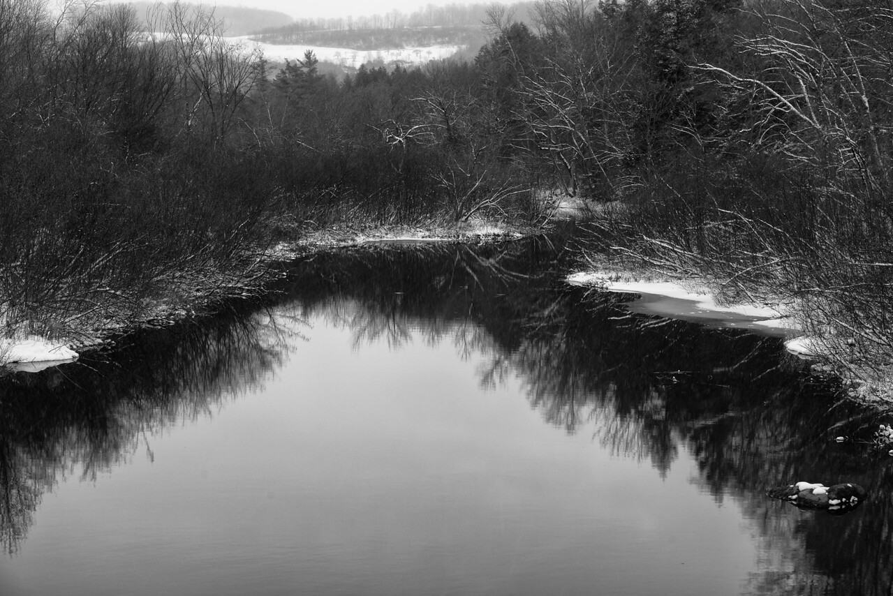 November 25 - Nine Mile Swamp.
