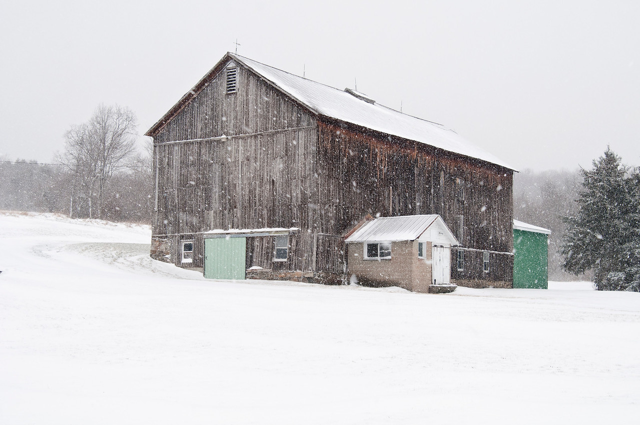 January 13 - Barn on the Sherburne/Columbus line.  This beauty never was painted and is in great shape.  This is the second closest barn to my home.  Oh yes, Winter arrived today!