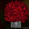 """""""CLUSTER OF RED ROSES"""""""