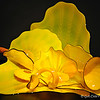 """VERONA YELLOW PERSIAN SET with KOHL BLACK LIP WRAPS"" by Dale Chihuly (1999)"
