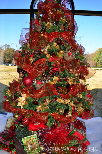"""""""CHRISTMAS SPLENDOR - 2"""""""